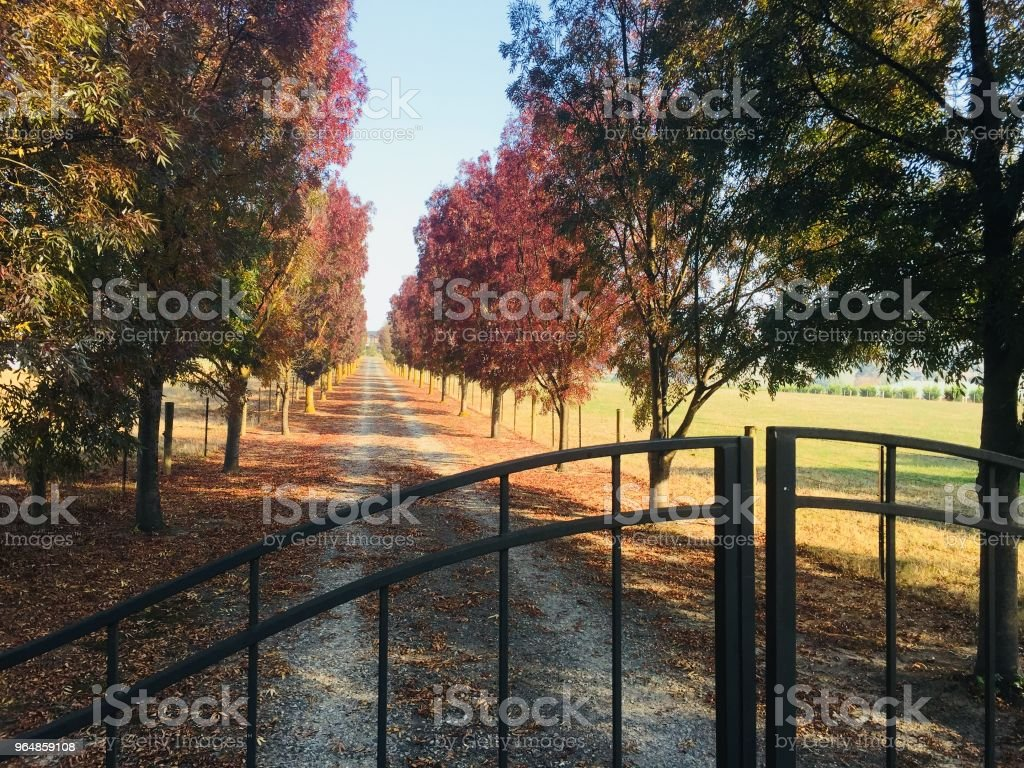 Yarra Valley Winery Gates royalty-free stock photo