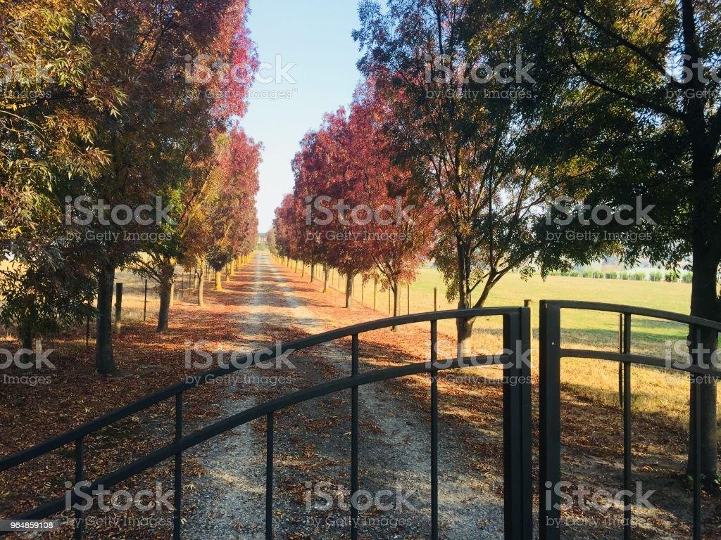 Yarra Valley Winery Gates royalty-free stock photo