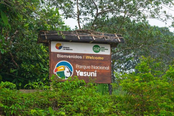 yasuni national park, ecuador - convenzione sulla diversità biologica foto e immagini stock