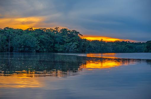 Parque Nacional Yasuni Sunset Ecuador Foto de stock y más banco de imágenes de América del Sur - iStock