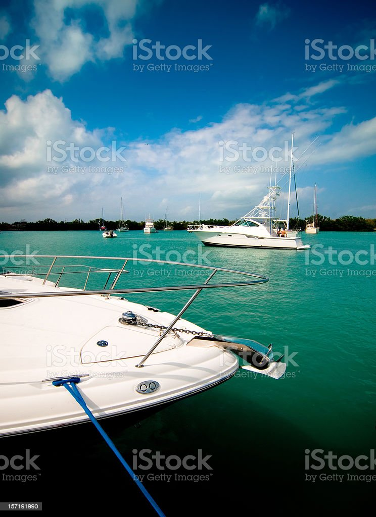 yatchs in miami royalty-free stock photo
