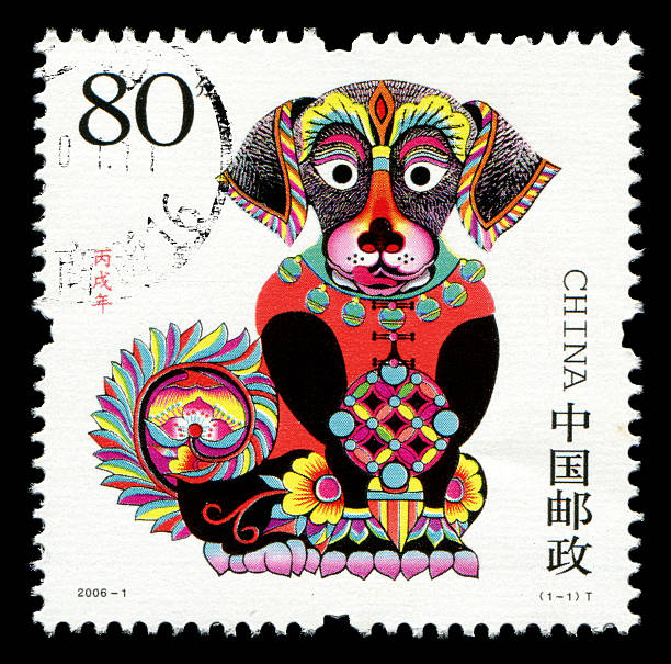 Year of the Dog - Photo