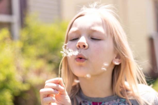 9 Year Old Girl Blowing Dandelion Seeds 1 – zdjęcie