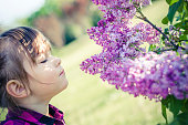 3 years old girl in park with lilacs