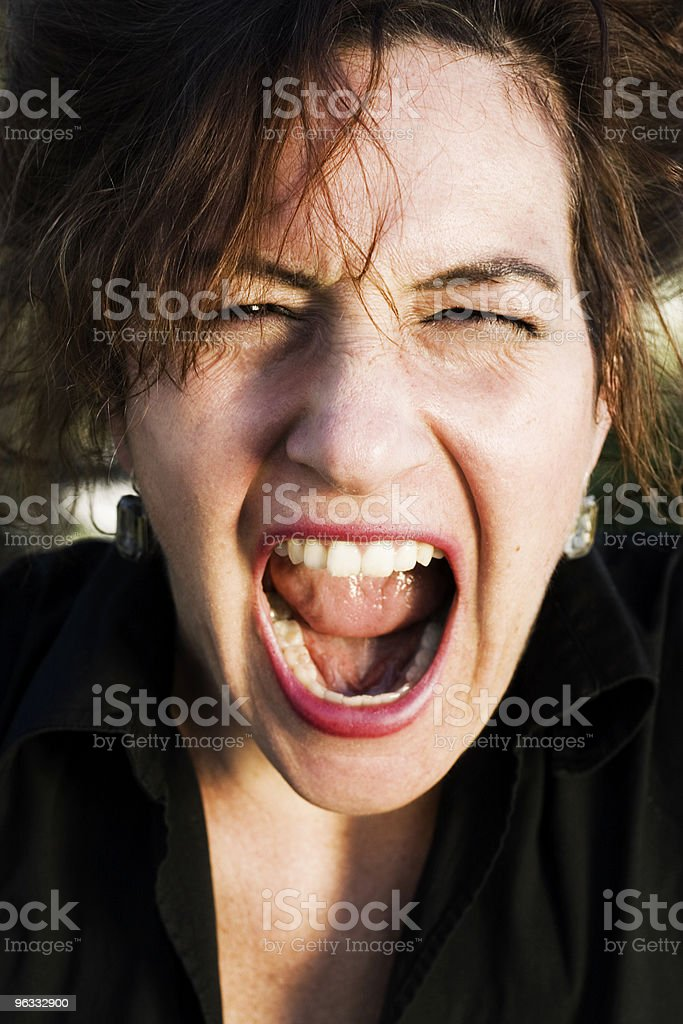 Yelling at You royalty-free stock photo