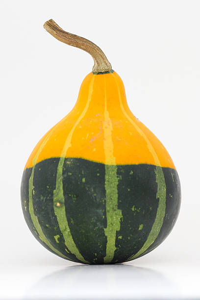 Yellow and Green Gourd stock photo