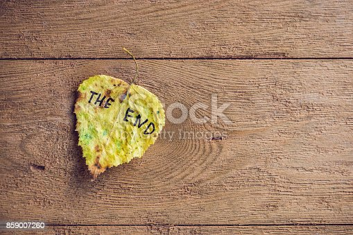 istock Yellow and green leaf with the inscription THE END on the old wooden background 859007260