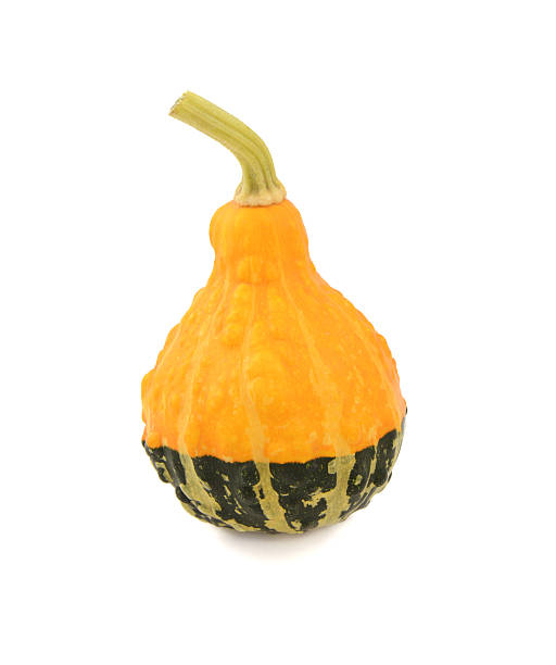 yellow and green ornamental gourd - gourd stock photos and pictures