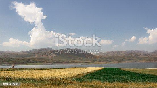 istock Yellow and Green scene 1339418381