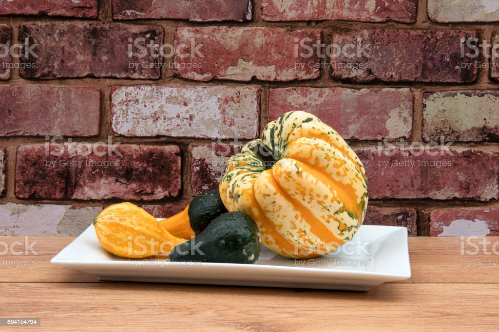 Yellow and green squash with gourds royalty-free stock photo