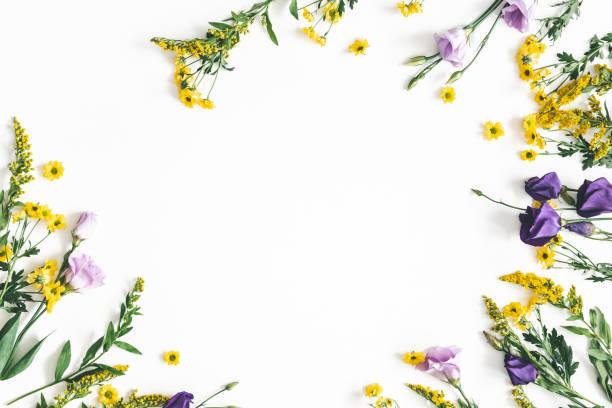 Yellow and purple flowers on white background spring easter concept picture id1133779189?b=1&k=6&m=1133779189&s=612x612&w=0&h=xjhgrcf8eyn0rxbi7ffiqsajox okrwfcotybl0jvrw=
