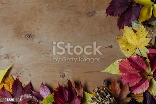 yellow and red leaves autumn sour sour sour sours brown background