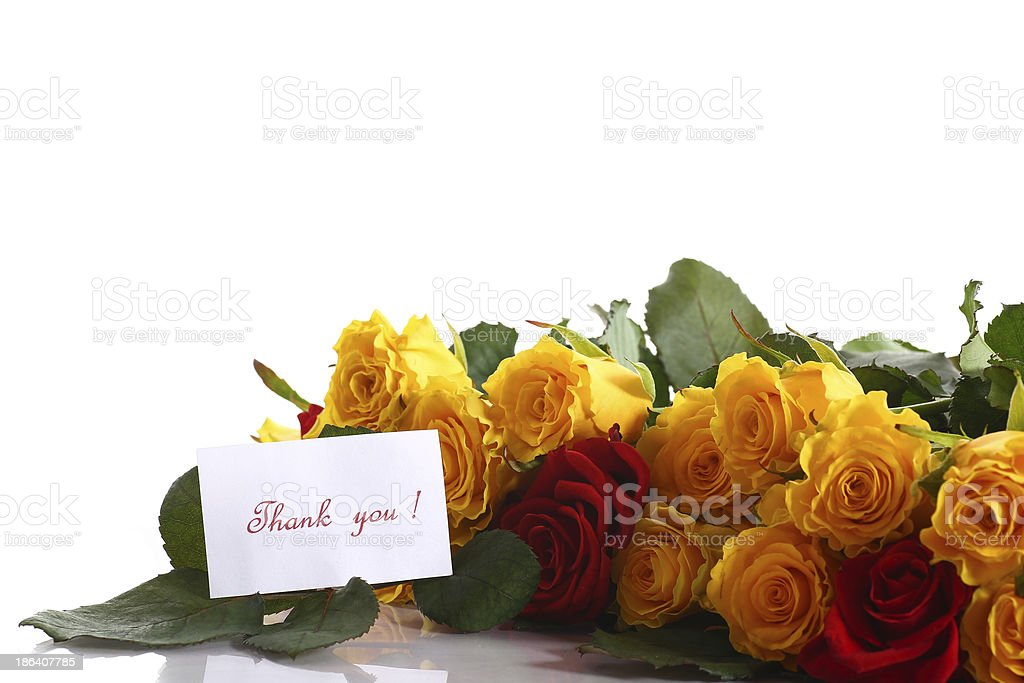yellow and red roses royalty-free stock photo