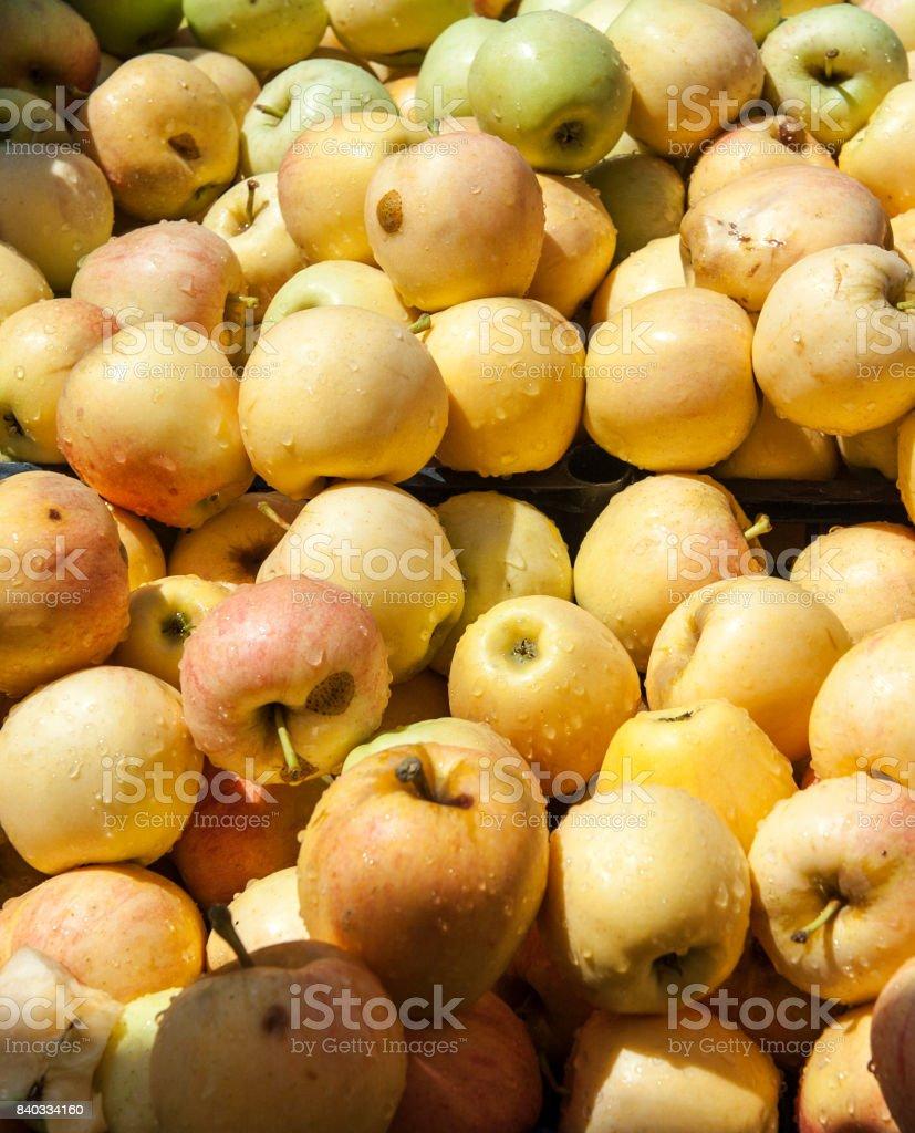 Yellow Apples at Farmer's Market stock photo