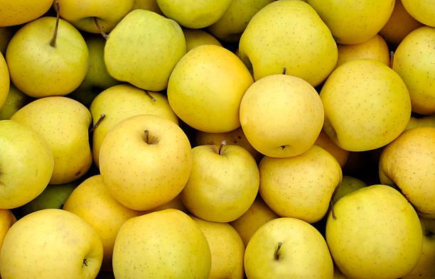 pommes jaunes - golden photos et images de collection