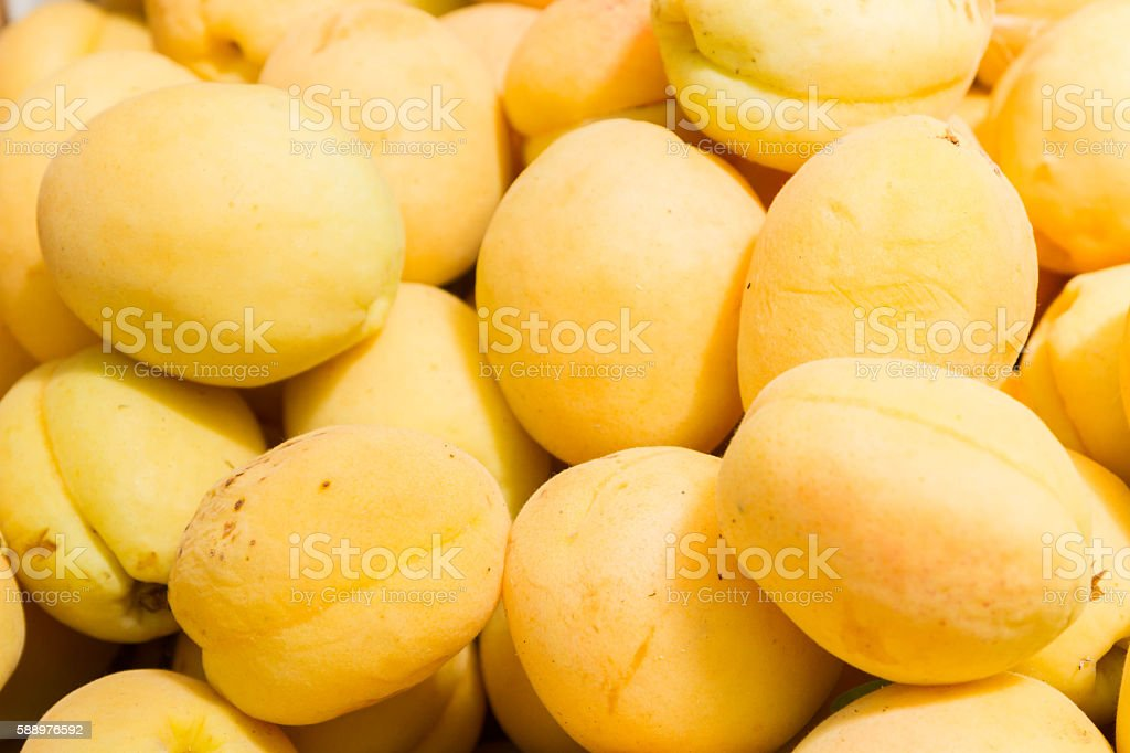 Yellow apricots in the store on the counter stock photo