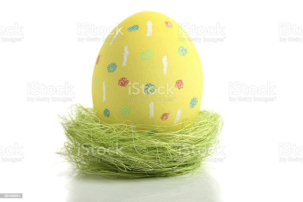 Yellow aster egg in nest royalty-free stock photo