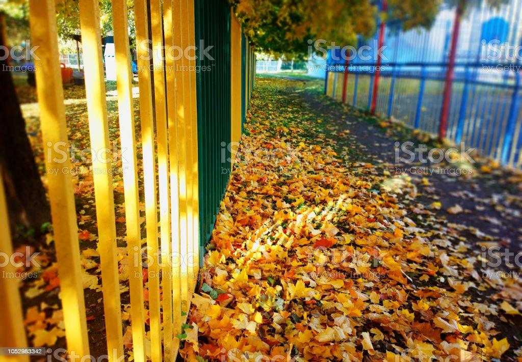 Yellow autumn fence with light leak background stock photo