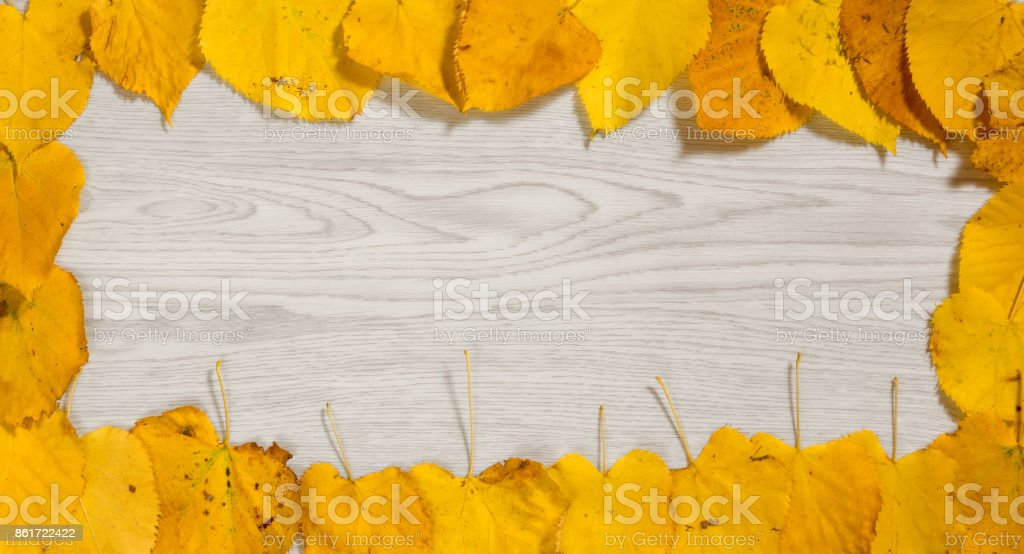 Yellow Autumn Leaves on a Wooden Background stock photo
