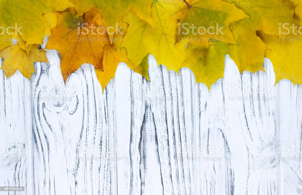 Yellow Autumn leaves over wooden background with copy space. stock photo