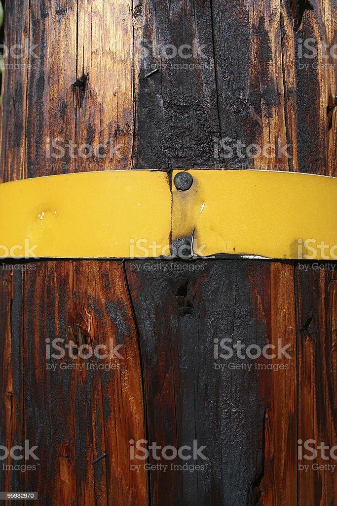 Yellow Band royalty-free stock photo