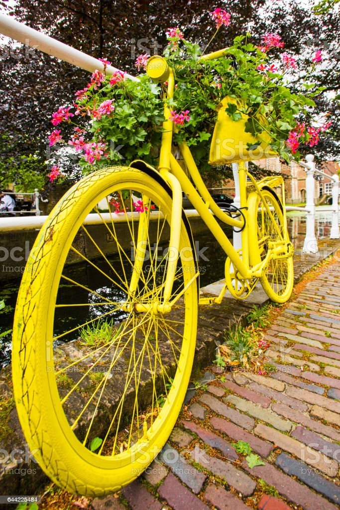 Bicicletta Gialla Con Geranei In Olanda Stock Photo Download Image