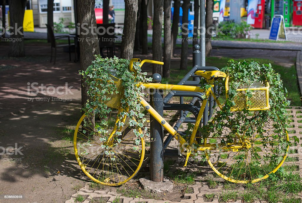Yellow bicycle with ivy стоковое фото