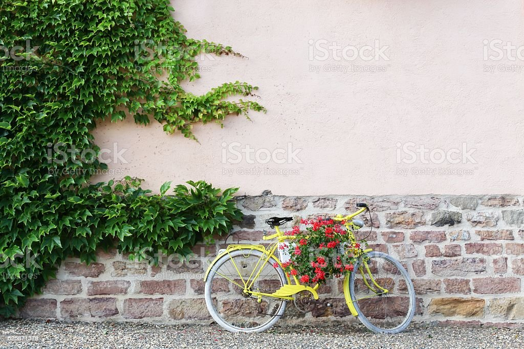 Yellow bike with flowers in Beaujolais, France – Foto