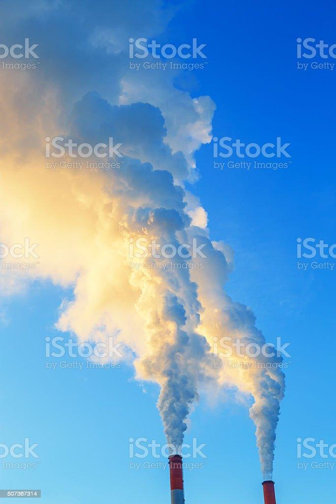 Jaune bleu fumée de deux tubes de plantes - Photo