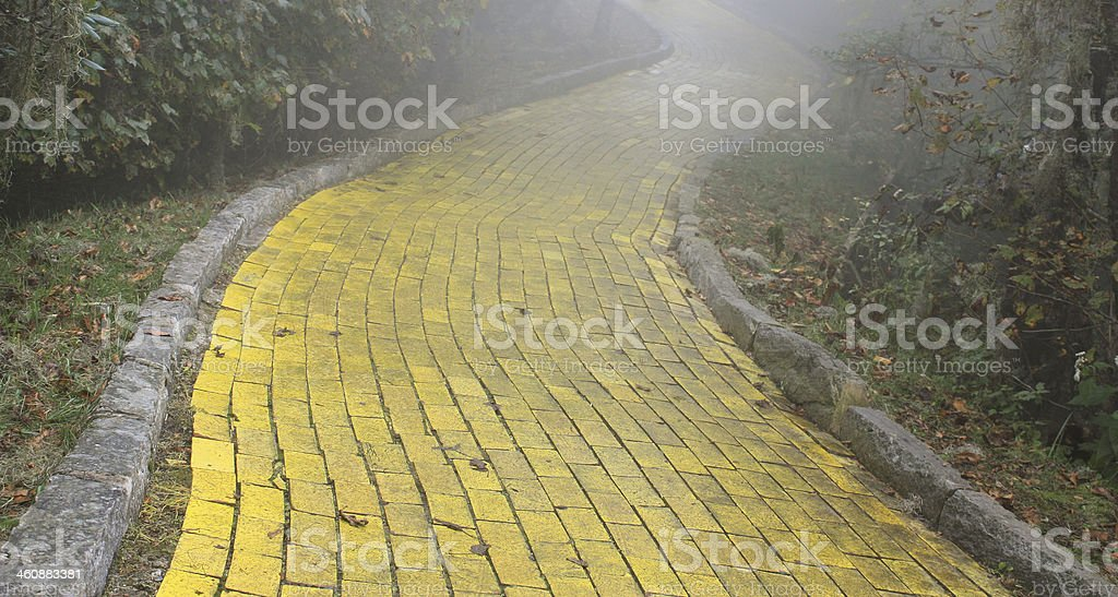 Yellow Brick Road in Forest stock photo