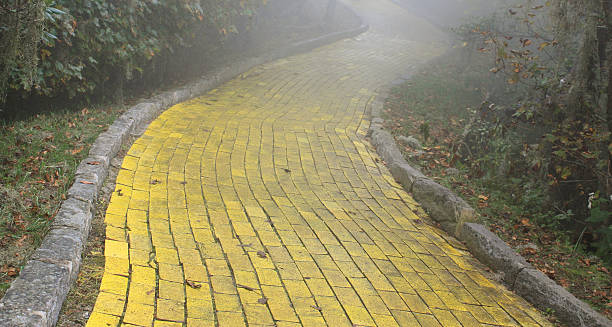 yellow brick road in forest - yellow stock photos and pictures