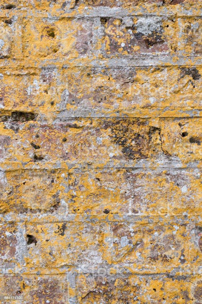 Yellow Brick Wall Texture royalty-free stock photo