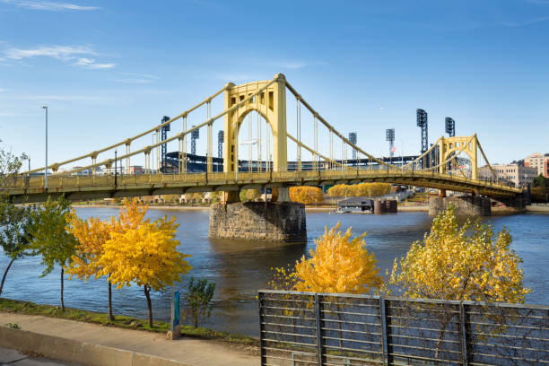 Yellow bridges and fall foliage of Pittsburgh, Pennsylvania. View of the Roberto Clemente Bridge over the Allegheny River in Pittsburgh, Pennsylvania, in autumn. pittsburgh stock pictures, royalty-free photos & images