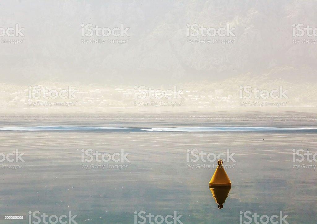 Giallo Boa in mare - foto stock
