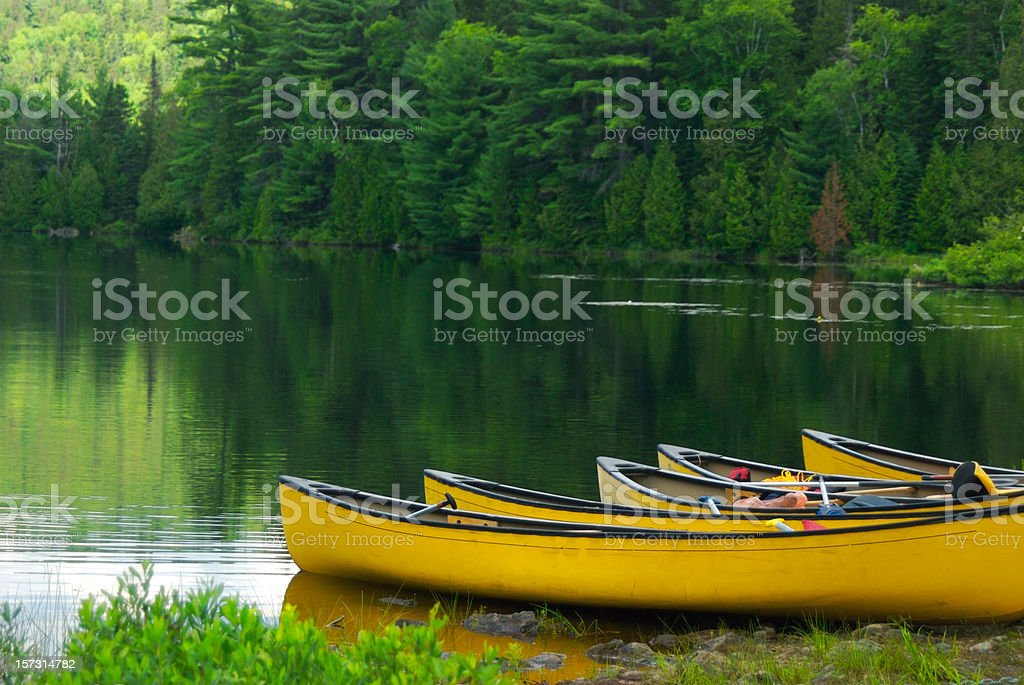 Giallo canoa - foto stock