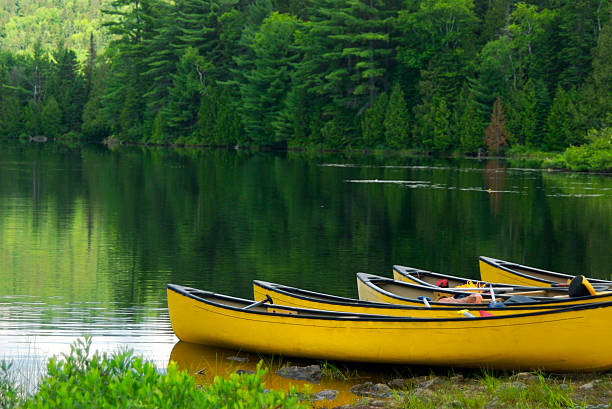 yellow canoes - june stock photos and pictures