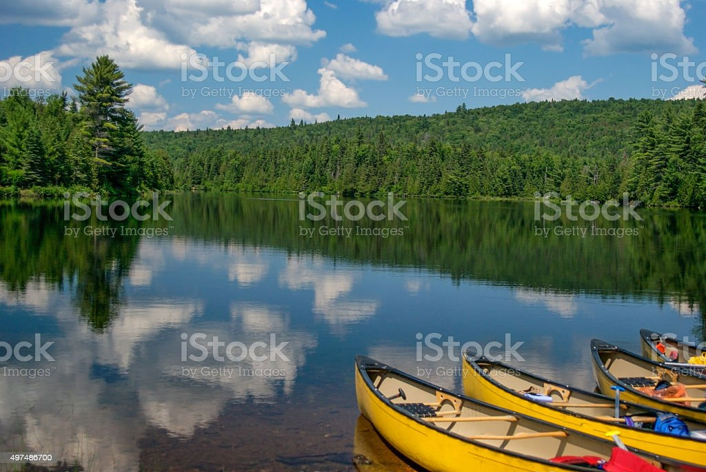 yellow canoes stock photo