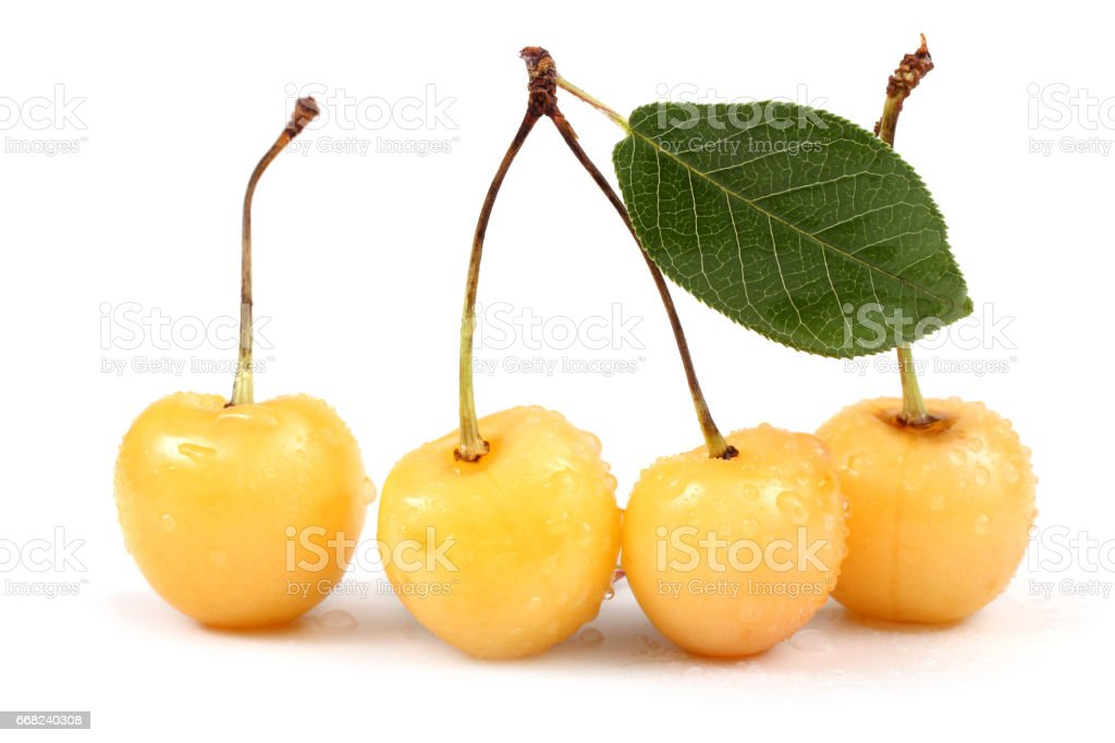 Yellow cherries and leaf foto stock royalty-free
