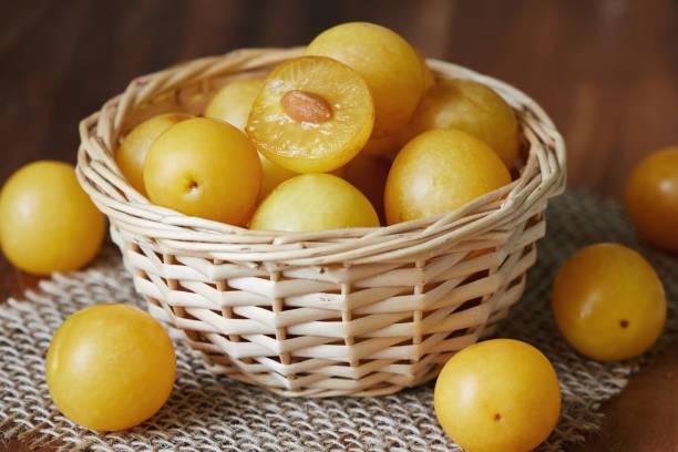 cerisier prune jaune - mirabelle photos et images de collection