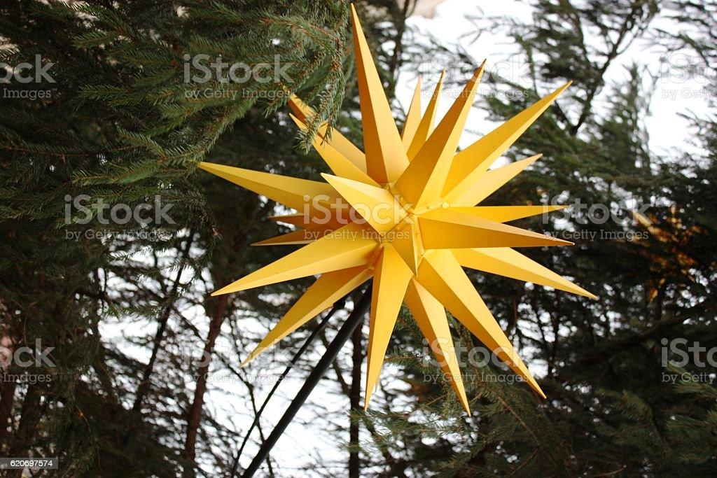Yellow christmas star in christmas tree stock photo