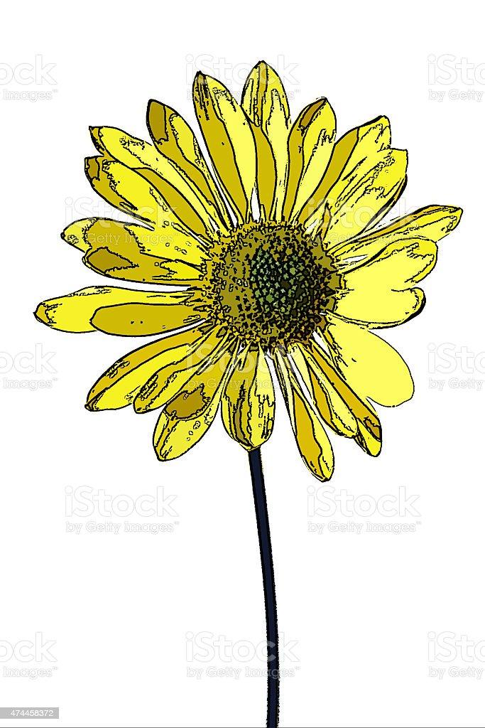 yellow chrysanthemum posterized stock photo