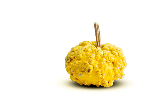 Yellow colored ornamental squash on a white background.