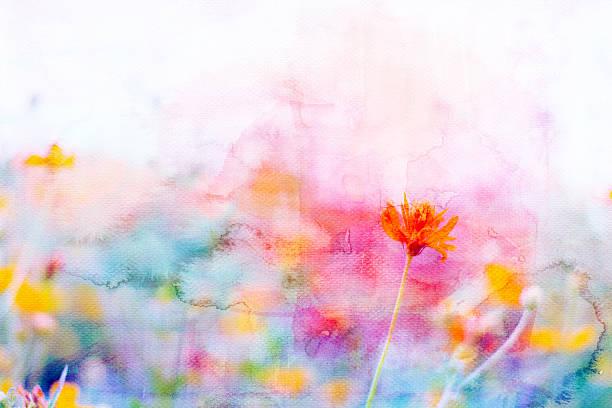 Gelbe Kosmos Blumen-mix mit Gemalte Aquarell auf Papier – Foto