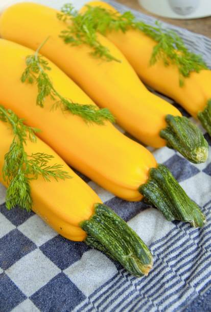 Yellow courgettes lying on a table covered with coriander leaves Yellow zucchini with cilantro leaves on a table freshly harvested from my allotment in Nijmegen the Netherlands werken stock pictures, royalty-free photos & images