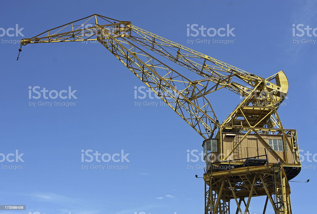 Yellow Crane stock photo