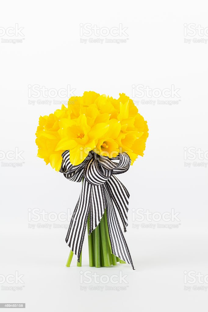 Yellow daffodil bouquet stock photo
