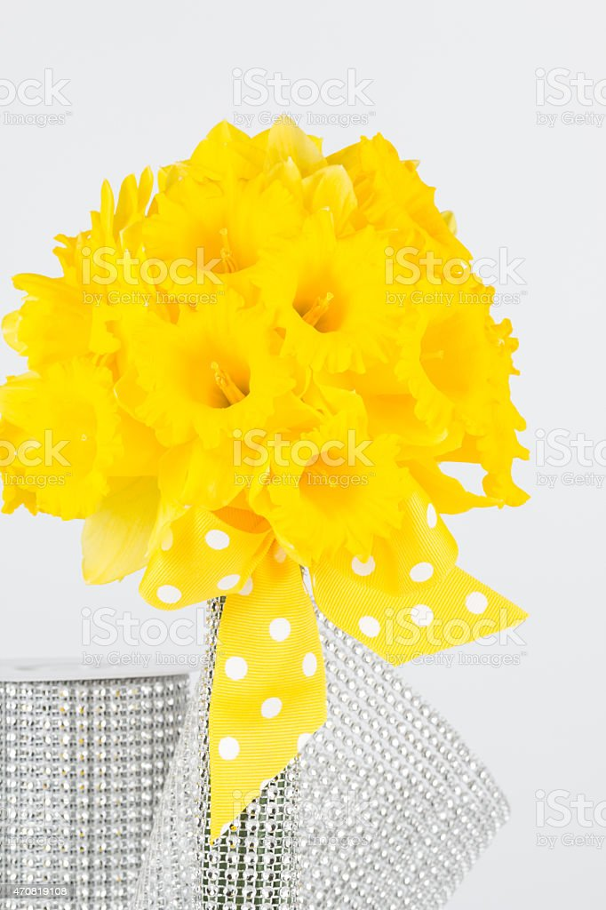 Yellow daffodils and stem wrapper stock photo