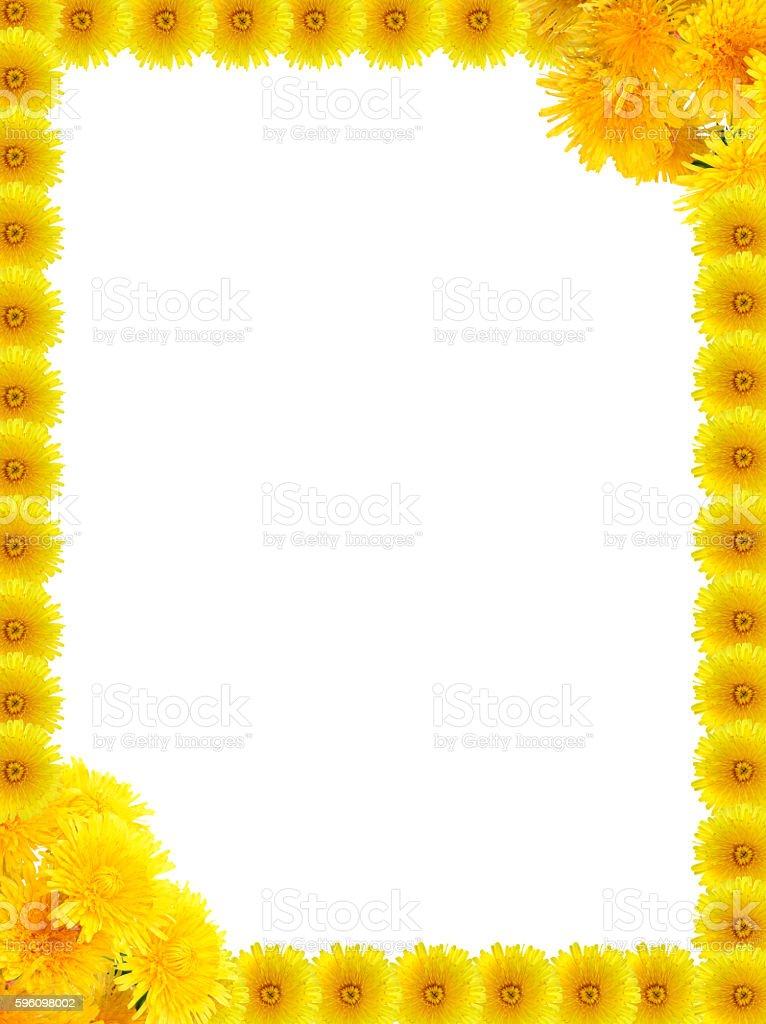 Yellow Dandelions Frame royalty-free stock photo