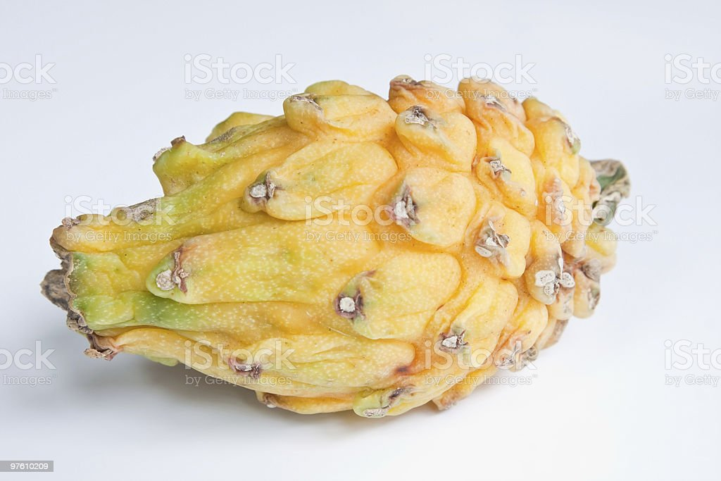 Yellow Dragon Fruit royaltyfri bildbanksbilder