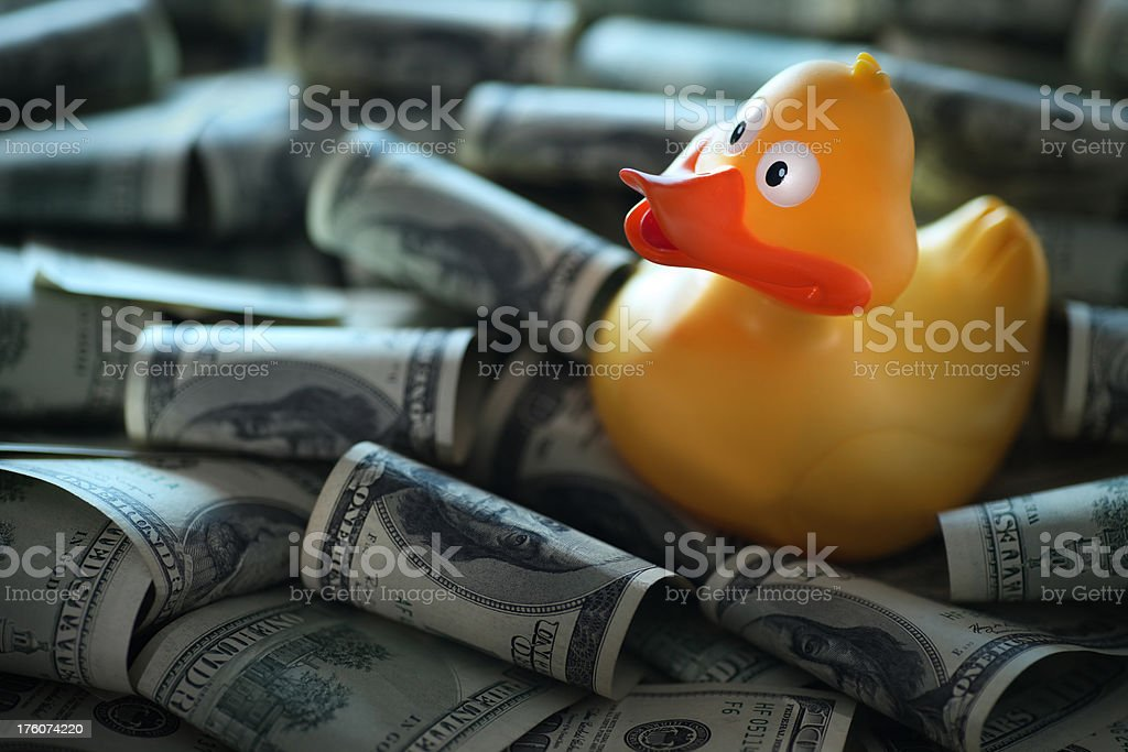 Yellow Duck In Dollars royalty-free stock photo